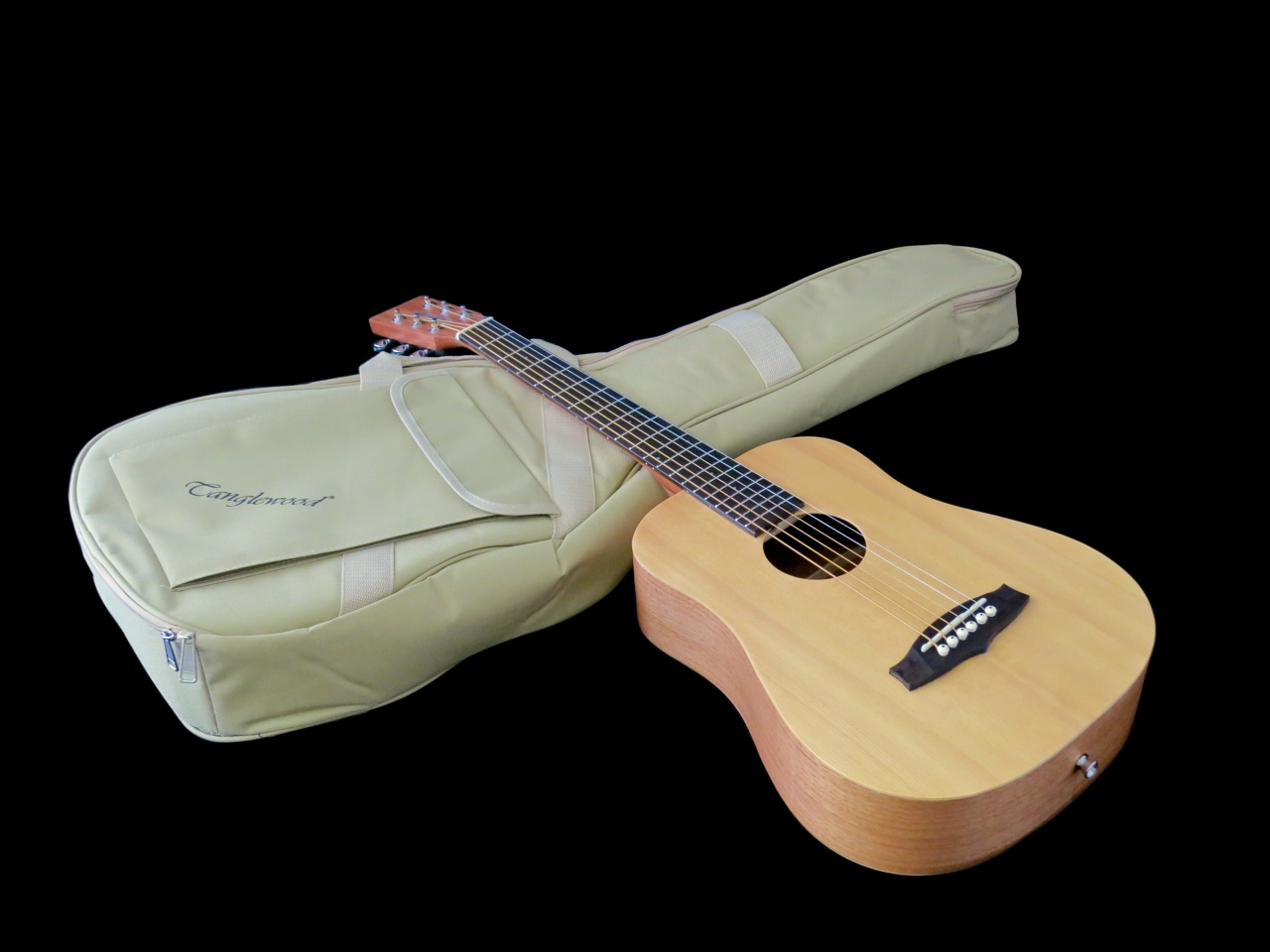Tanglewood TWR-T – 1